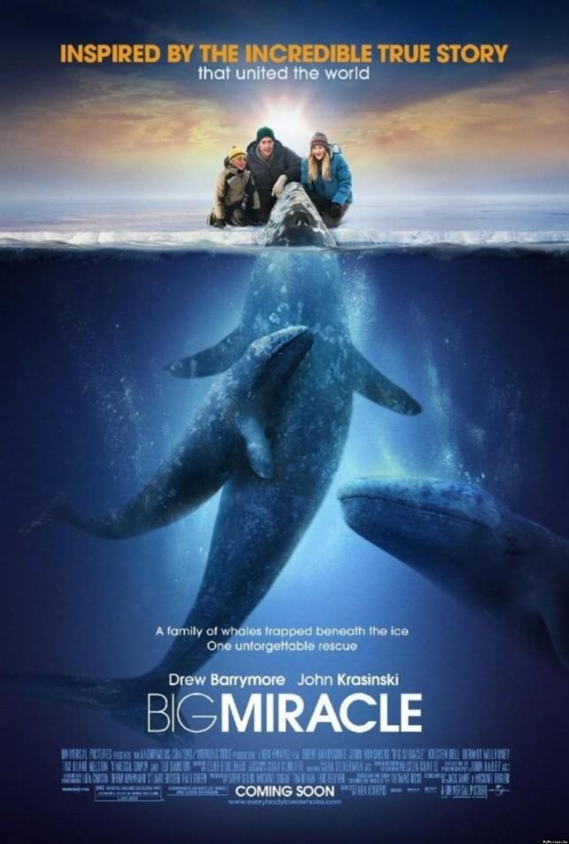 Big Miracle 2012 filmas
